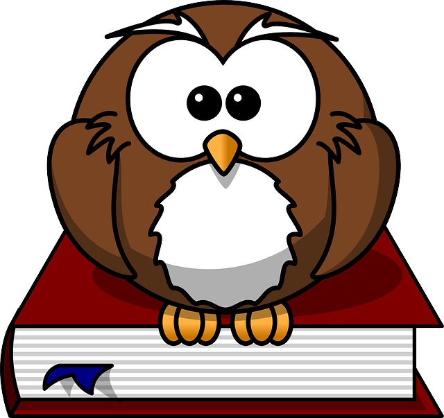 Owl on a book